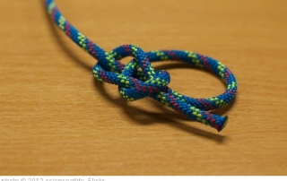 bowline knot pic