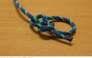 bowline knot pic