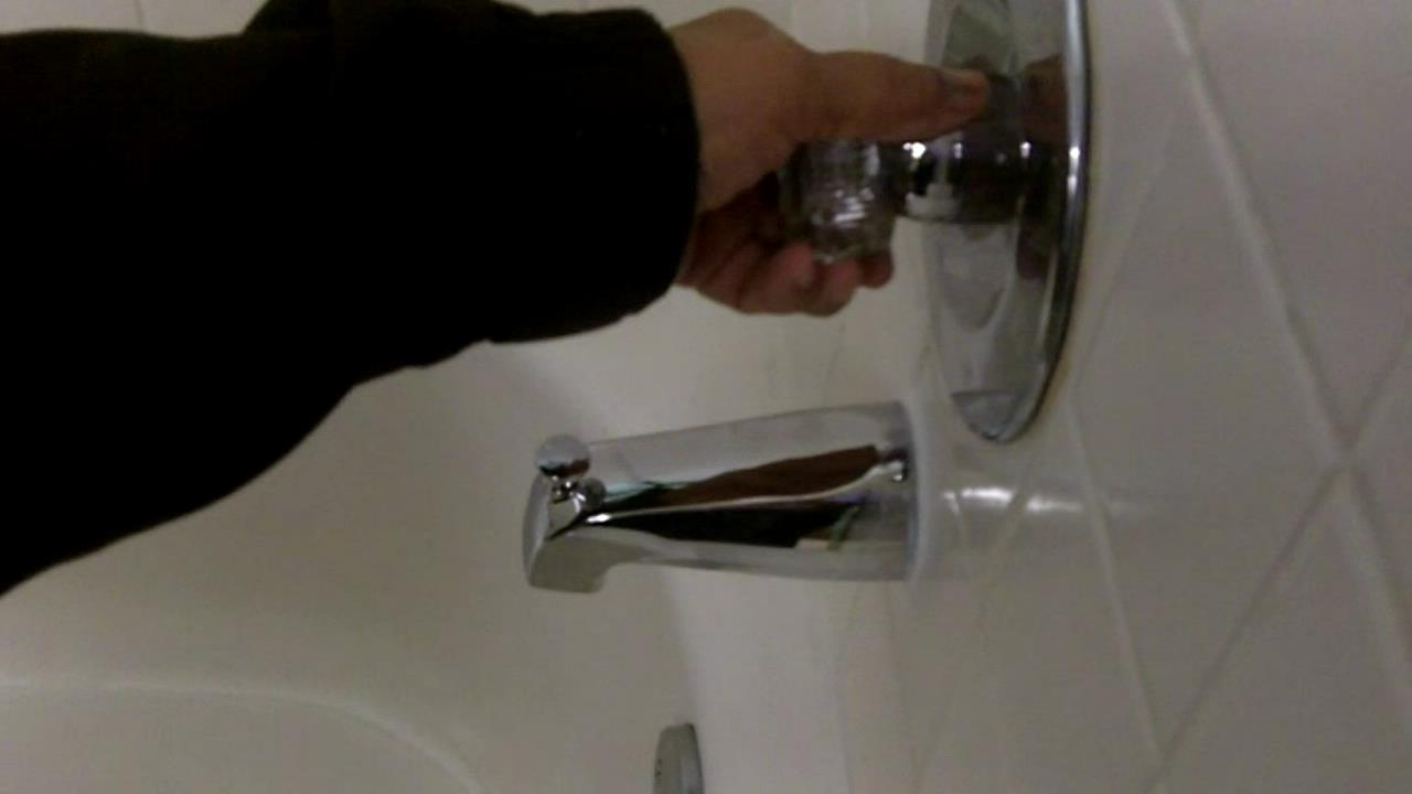 shower diverter pic 2