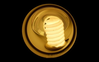 LED light bulb pic