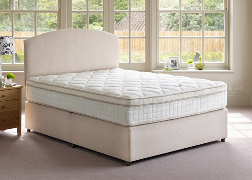 mattress article e francis 2